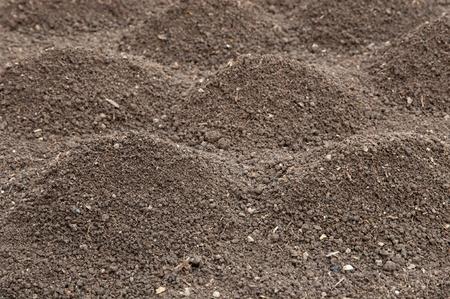 Soil- humus soil, selective focus on front heap