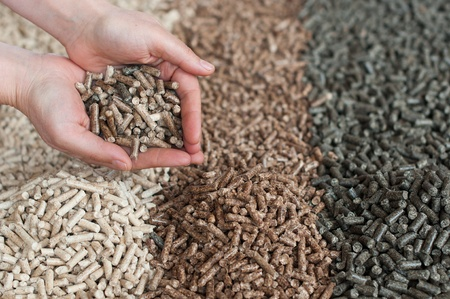 Different kind of pellets in female hands- pine,beech,sunflower