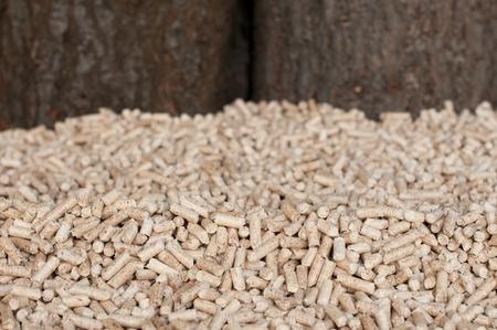 biomasse: Pine peletts- selective focus on the heap Stock Photo
