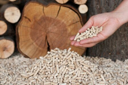 holzbriketts: Pine peletts-Alternative Energy