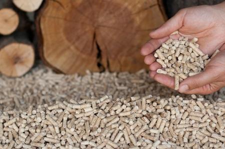 Peletts-pine and oak pelett- selective focus on the heap