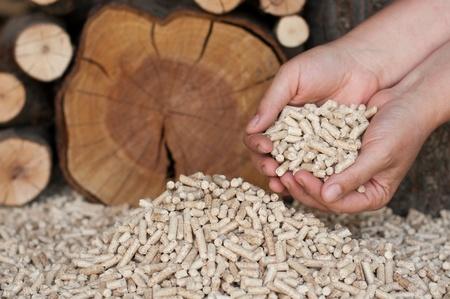 biomasse: Peletts-pine and oak pelett- selective focus on the heap