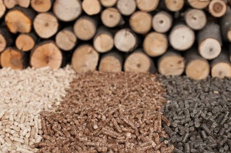 pellets: Different kind of pellets- oak, pine,sunflower