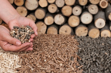 biomasse: Different kind of pellets- oak, pine,sunflower, in female hands- selective focus on the hand and the heap