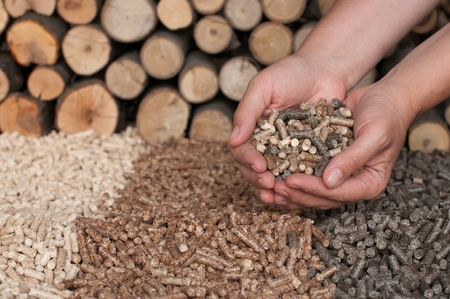 Different kind of pellets- oak, pine,sunflower, in female hands- selective focus on the hand and the heap Stock Photo - 13563464
