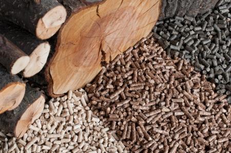 Différents types de granulés et de chênes, de pins, de tournesol Banque d'images