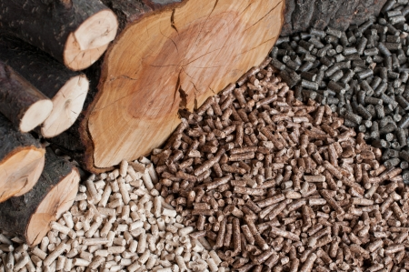 pellet gun: Different kind of pellets- oak, pine,sunflower