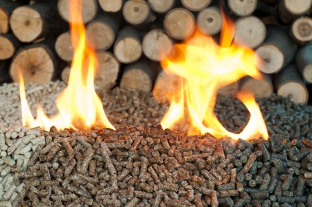 Different kind of pellets- oak, pine,sunflower, in flames. Selective focus on the heap.