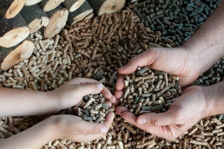 biomasse: Different kind of pellets- oak, pine,sunflower, in male and child hands- selective focus on the hand.