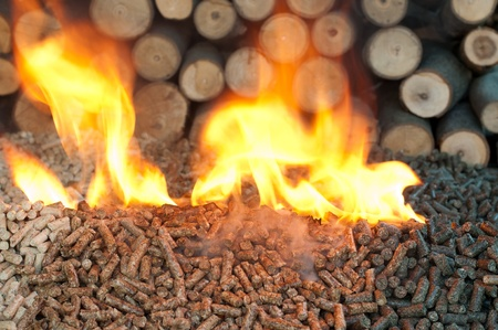 briquettes: Different kind of pellets- oak, pine,sunflower, in flames. Selective focus on the heap.