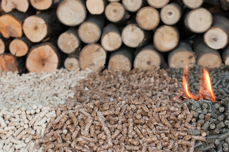 biomasse: Different kind of pellets- oak, pine,sunflower, in flames. Selective focus on the heap.