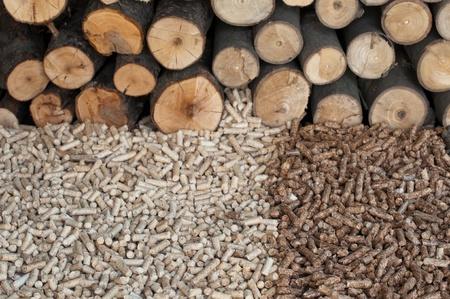 biomasse: Different kind of pellets- oak, pine. Selective focus on the heap. Stock Photo