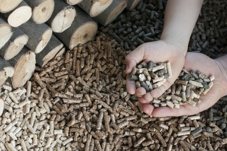 Different kind of pellets- oak, pine,sunflower, in male and child hands- selective focus on the hands. Stock Photo