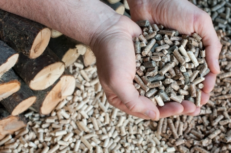 Different kind of pellets- oak, pine,sunflower, in male hands- selective focus on the hand and the heap Stock Photo - 14036733