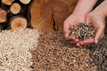 Different kind of pellets- oak, pine,sunflower, in female hands- selective focus on the hand and the heap