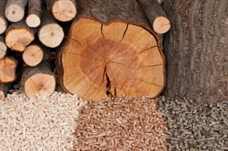 Different kind of pellets- oak, pine,sunflower- selective focus on  the heap