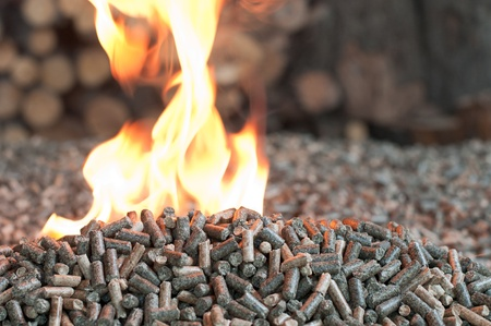 Different kind of pellets- oak, pine,sunflower, on a flames-selective focus on  the heap
