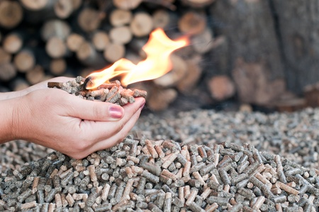 Different kind of pellets- oak, pine,sunflower- selective focus on  the heap  Female hands hold pellets and flames  photo