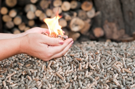 Different kind of pellets- oak, pine,sunflower- selective focus on  the heap Stock Photo - 14936894