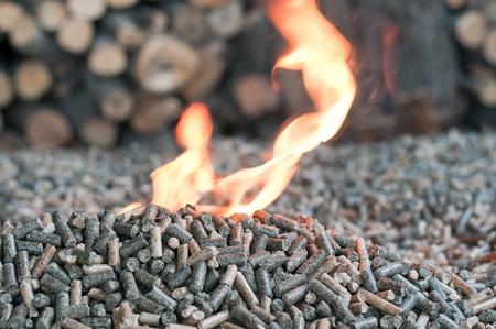 Different kind of pellets- oak, pine,sunflower, on a flames-selective focus on  the heap photo
