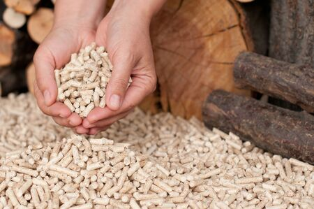 biomasse: Pellets- selective focus on the heap and the hand