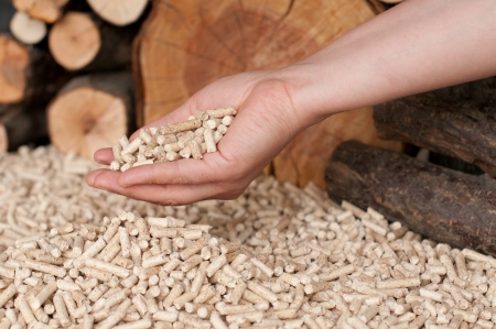 briquettes: Pellets- selective focus on the heap and on the hand