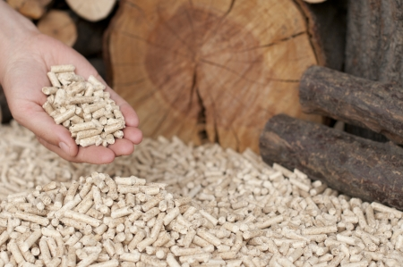 Pine and oak pellets- alternative energy- selective focus on the heap and hand