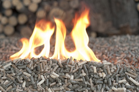 Different kind of pellets in a flames photo