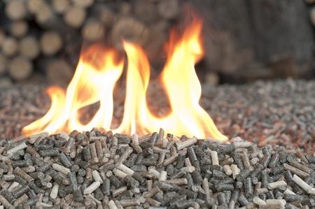 holzbriketts: Verschiedene Arten von Pellets in einem Flammen