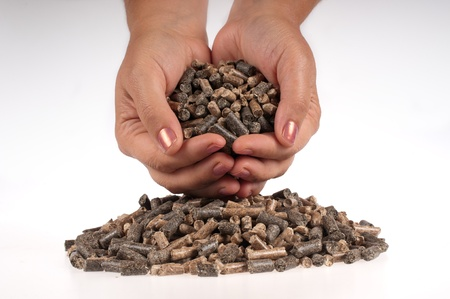 Different kind of pellets in female hand on the white background photo