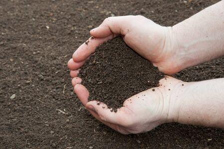 Soil in a male hands photo
