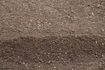 Soil- selective fokus onthe top of the heap Stock Photo - 15442454