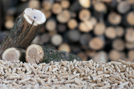 wood pellet: Pellets- selective focus on the heap