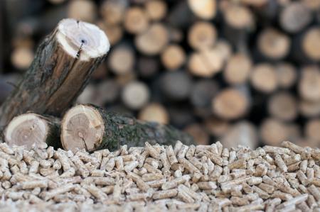 biomasa: Pellets selectivo se centran en el montón