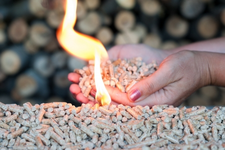 wood pellet: Pellets in female hands and flames-selective focus on the heap