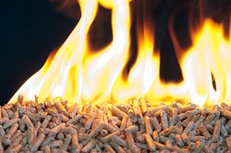 Pellets de chêne dans les flammes