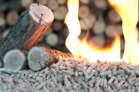 pellet gun: Oak Pellets in  flames- chopped firewood background