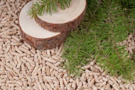 Pine Pellets- selective focus on the slices Foto de archivo