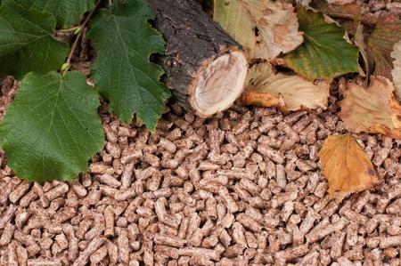 holzbriketts: Oak Pellets und Materialien Pellets gemacht Lizenzfreie Bilder