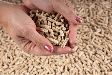 biomasse: Pellets in female hands -selective focus on the hands Stock Photo