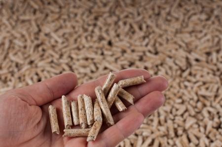 briquettes: Pine Pellets- selective focus on the heap Stock Photo