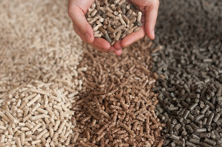 biomasse: Three  kind of pellets in female hands Stock Photo