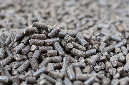 biomasse: Sunflowers  Pellets- selective focus on the heap