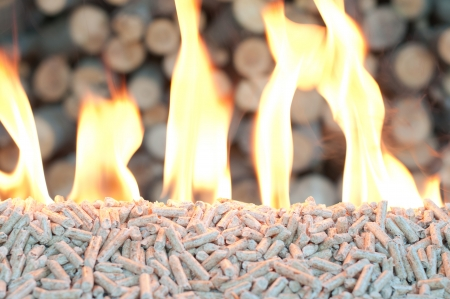 Pine Pellets- selective focus on the heap Stock Photo