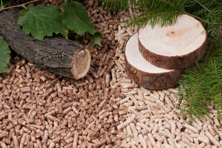 wood pellet: Two kind of pellets and materilas pellets made- selective focuson the front Stock Photo