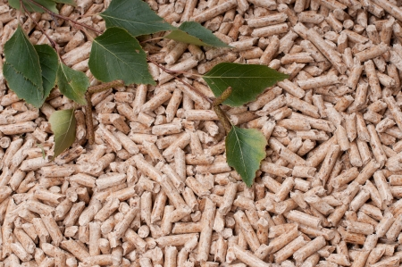 Biomass-  pellets and leafs- photography photo