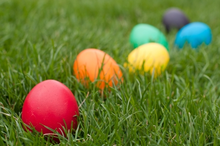 Easter eggs in a row on the meadow Standard-Bild