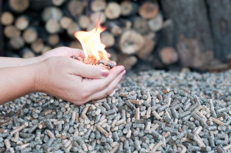 Pellets in flames in female hands Stock Photo - 16857982