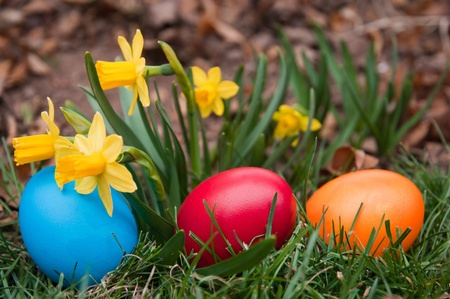 Easter eggs in a garden photo