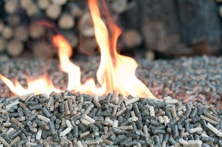 holzbriketts: Verschiedene Arten von Pellets in Flammen
